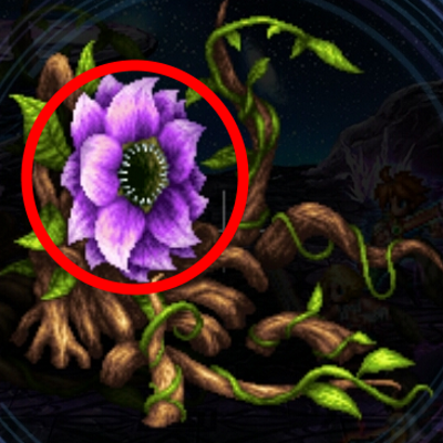 antenora_flower